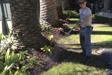 landscaping design Bentleigh